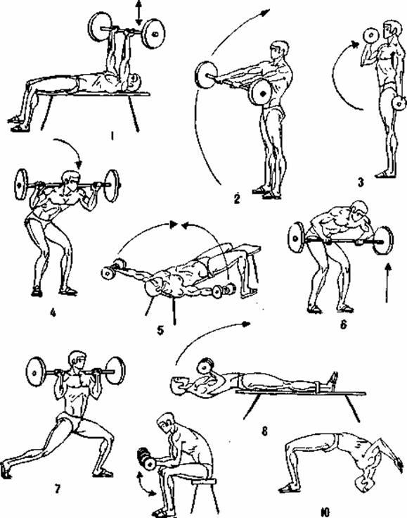 Комплекс упражнения с гантелями в домашних условиях для женщин